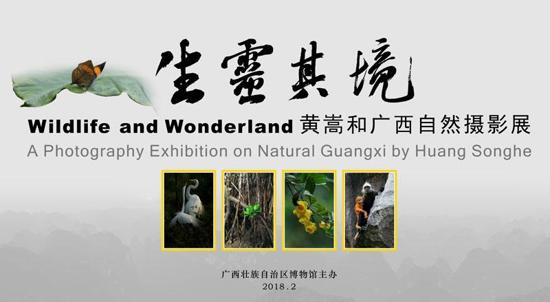 生灵其境——黄嵩和广西自然摄影展