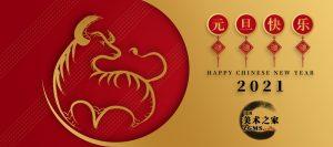中国美术之家祝全体会员2021年元旦快乐!